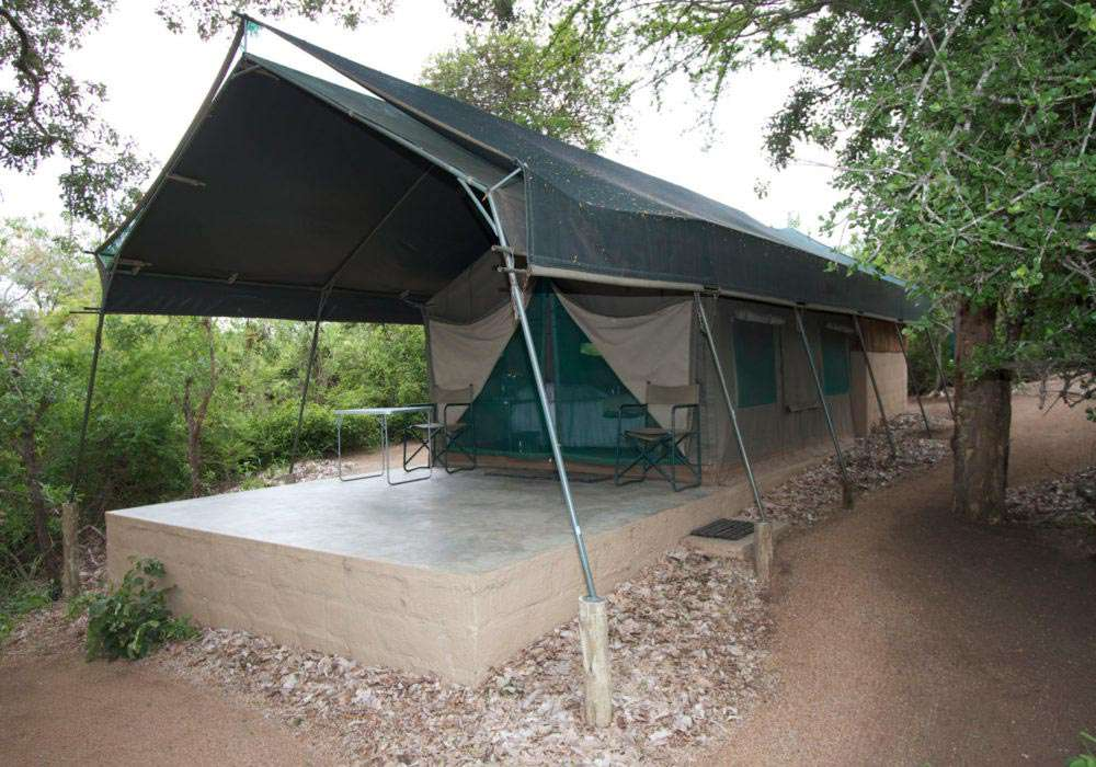 Area_Timbavati_Tent copy