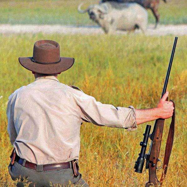 Safari options profile