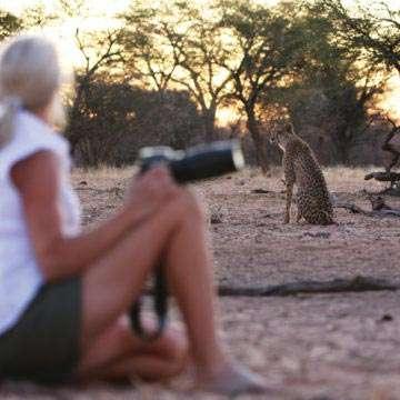Photographic_Touring_Safaris