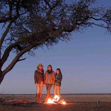 Safari Life Gallery26
